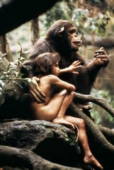 Christopher Beck and Danny Potts in Greystoke: The Legend of Tarzan, Lord of the Apes Tarzan Actors, Tarzan Movie, Tarzan Of The Apes, Tarzan And Jane, Jungle Life, Fantasy Films, Images Google, Disney S, Conte