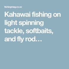 Kahawai fishing on light spinning tackle, softbaits, and fly rod…