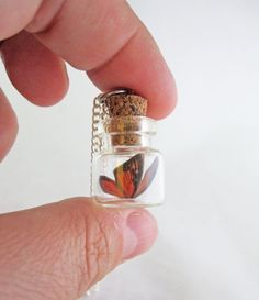 Tiny Monarch Butterfly Bottle Necklace by egyptianruin on Etsy Bottle Jewelry, Bottle Charms, Bottle Necklace, Mini Glass Bottles, Small Bottles, Bottles And Jars, Glass Vials, Cute Jewelry, Diy Jewelry