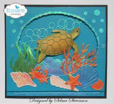 Turtle Fun                                                                                                                                                      More