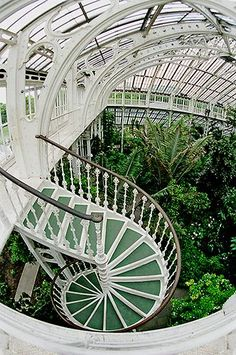 Royal Botanic Gardens, Kew Gardens, Victorian greenhouses full of exotic plants The Places Youll Go, Places To Go, Victorian Greenhouses, Victorian Gardens, Greenhouse Plans, Small Greenhouse, Greenhouse Wedding, Greenhouse Gardening, Stairway To Heaven