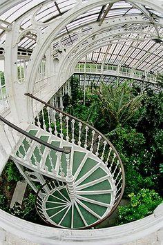 Architecture - Royal Botanic Gardens, Kew - Victorian greenhouses, full of exotic plants.