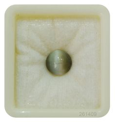 The Weight of Cat Eye Fine is about carats. The measurements are x width x depth). The shape/cut-style of this Cat Eye Fine is Oval. This carat Cat Eye Fine is available to order and can be shipped anywhere Cats Eye Stone, Buy A Cat, Cut And Style, Cat Eye, Gin, Natural Gemstones, Shapes, Eyes, Nature