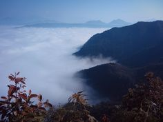 Above the clouds at Bandipur, Nepal #travel #nepal #bandipur