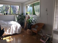 Imagem de plants, room, and bedroom