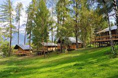 "Safari-Lodge-Zelt ""Lion"" am Nature Resort Natterer See Innsbruck, Glamping, Travel Around The World, Around The Worlds, Safari, Lodges, Vacation Places, Great View, Camping Hacks"