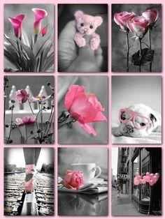 Splash of color in pink / mood board Pink Love, Pretty In Pink, Color Splash, Color Pop, Collages, Color Collage, Mood Colors, Beautiful Collage, Jolie Photo