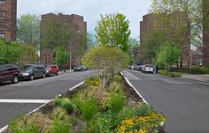 We spoke with Keith Bowers on the NYC project Biohabitats. Biohabitats works with the New York City Department of Environment Protection to create sound stormwater management practices throughout The Big Apple.