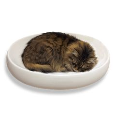 little cat design - cats contour ceramic cat bed - for cats that like sleeping in your bathroom sink!
