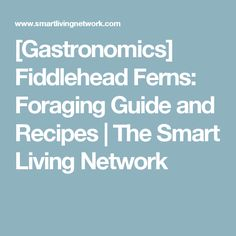 [Gastronomics] Fiddlehead Ferns: Foraging Guide and Recipes | The Smart Living Network