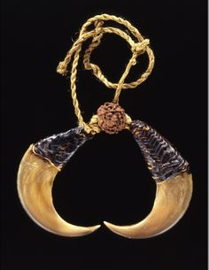 India   Ear ornament from the Namzik Naga people   Tiger claws, natural fiber   2nd half of the 19th century