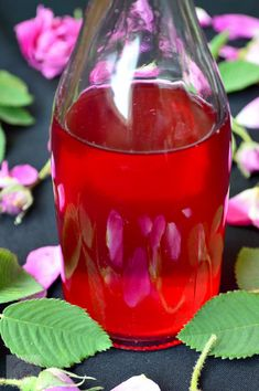 Otet de trandafiri - CAIETUL CU RETETE Wine Glass, Tableware, Dinnerware, Dishes, Place Settings, Wine Bottles
