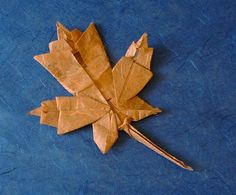 Maple leaf by Brian Chan  Diagrams on Brian's website  Folded from a square of mulberry paper