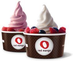 Homemade Frozen Yogurt Recipe like Red Mango!