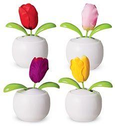 Be Happy™ Solar Powered Dancing Tulip