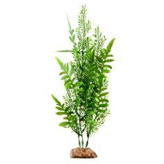 Aqueon® Artifical Fern Aquarium Plant | Artificial Plants | PetSmart