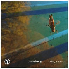 'Cooking Groove' EP by Jambalaya 37 is out now. Have a listen to the inspiring organic grooves made with soul, pop and jazz as the main ingredients.