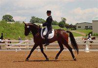 Virginia Horse Center in Lexington, VA
