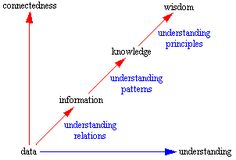 Principle, here, is more like the Sum of it all and denoting Importance. Data, Information, Knowledge, & Wisdom
