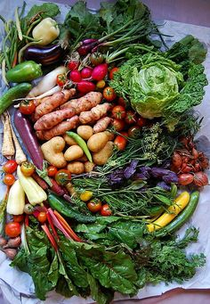 """Herzlich willkommen bei """"Makingsens""""! Was gibt es hier zu sehen? leckere, frische und gesunde Gerichte aus meiner Küche - zu 95% vegetarisch (manchmal verirrt sich eine Jakobsmuschel) & immer """"..."""