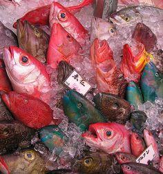 Naha Fish Market - Okinawa, Japan - January 30, 2009