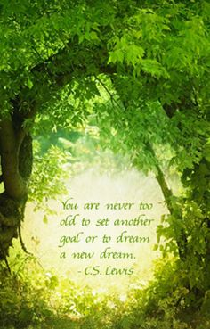 You are never too old to set another goal or to dream a new dream.  -- C.S. Lewis