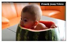 Funny YouTube Videos-Whats app funny Videos-Comedy Videos https://youtu.be/wDKv_Ts17QQ    https://youtu.be/YrWEUwEjQRk    https://youtu.be/2VUpe_rsWNA    https://youtu.be/5Qyp8v3A0O4    https://youtu.be/64WOkTFEVeU  Hope you liked these videos.   #comedy videos #crazy funny videos #funny prank videos #funny videos #funny youtube videos #girls videos #hindi bollywood movie #rajpal yadav comedy scenes #whats app funny videos #youtube videos