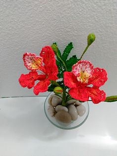 Take a journey to the tropics with this beautiful bloom. I can't think of any other flower that speaks tropical more than the beautiful Flamboyant! The Royal Poinciana is known as one of the world's most beautiful trees… and I must agree!