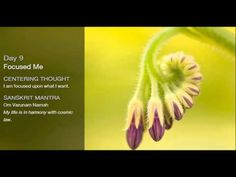 ▶ Oprah Deepak Meditation Day 9 - YouTube  -  19:06