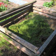 Kompostierung http://www.gartensaison.de/garten/kompostierung.htm