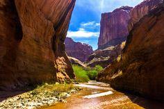 Escalante Utah, USA  [4000x6000] #nature and Science