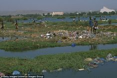 Up to 95 per cent of plastic polluting the world's oceans pours in from just ten rivers, according to new research. The top 10 rivers, including the River Niger (pictured) accounted for so much plastic because of the mismanagement of waste