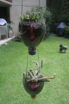 Jardin de Cactus colgante reciclado! ♥