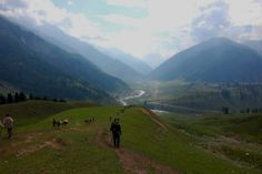 Kashmir Great Lakes Trek: Possibly the most beautiful trek on the list, the Kashmire Great Lakes Trek is nature's gift to humanity. While trekking, you will encounter seven beautiful, sparkling, icy, natural lakes that make you feel like you're gaping at a supremely talented artists painting.
