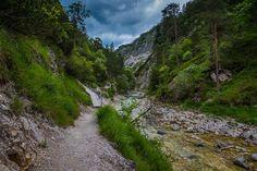 Alpine summer, Austria