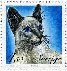 Siamese cat - Postage stamp designed by Eva Jern after photograph and engraved by Martin Mörck, issued by Sweden on March 18, 1994