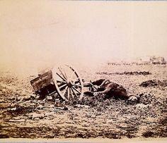 Dead horse on battlefield, Gettysburg, Pennsylvania.