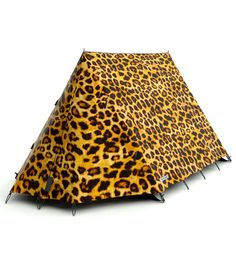 leopard print glamping style tent fun outdoor camping