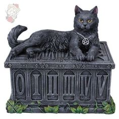Ebros Black Cat with Pentacle Necklace Fortune's Watcher Tarot Card Deck Holder Jewelry Box Figurine with Major Arcana Numbers Home Decor Statue of Mystical Feline Cats Wicca Witchcraft Talisman Wicca Witchcraft, Wiccan, Magick, Pagan, Tarot Card Decks, Tarot Cards, Witch Cat, Major Arcana, Pentacle