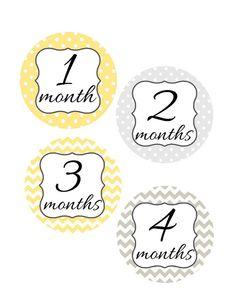 Baby Month Stickers Monthly Onesie Stickers by StickToItDesigns