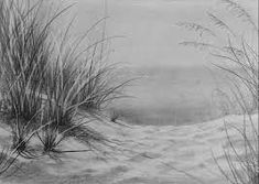 Image result for beach sand dunes grass images