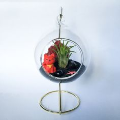 Items similar to The Maneki-neko Series: Red and Black Terrarium Kit on Etsy Air Plant Terrarium, Terrarium Kits, Maneki Neko, Glass Vessel, Air Plants, Plant Hanger, One Pic, Reindeer, Bubbles