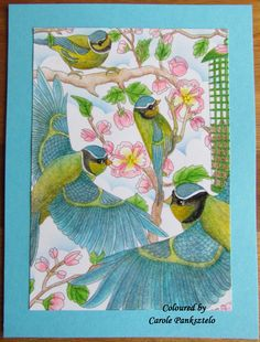 Claritystamp Postcards  Feathered Friends Collection - Set 2