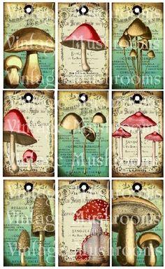 digital collage sheet / digital download / mushrooms by LandofEnchantment, $4.98