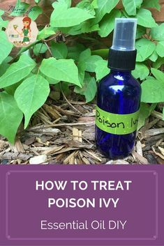 To treat the itchy rash, I put together some of my favorite essential oils with apple cider vinegar as a base. Learn how you can treat poison ivy with essential oils in this #DIY recipe.