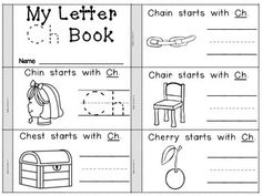 DIGRAPH FLIP BOOKS - 14 Flipbooks for introducing Digraphs TH, SH, CH, WH, PH, EE, and OO.   Ending and Medial sounds are emphasized as well.