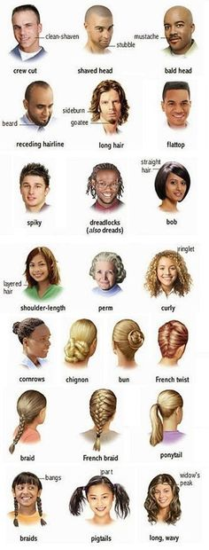 hair vocabulary