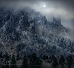Moonlight Shadow by AdrianBorda. Please Like http://fb.me/go4photos and Follow @go4fotos Thank You. :-)