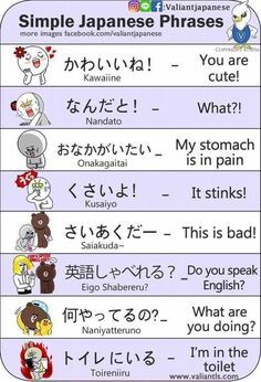 Japanese is a language spoken by more than 120 million people worldwide in countries including Japan, Brazil, Guam, Taiwan, and on the American island of Hawaii. Japanese is a language comprised of characters completely different from Basic Japanese Words, Japanese Phrases, Study Japanese, Japanese Culture, Learn Basic Japanese, Learning Japanese, Japanese Language Lessons, Korean Language, Italian Language