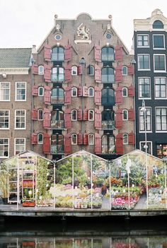Greenhouses on the Water in Amsterdam | #Holland #travel #Amsterdam